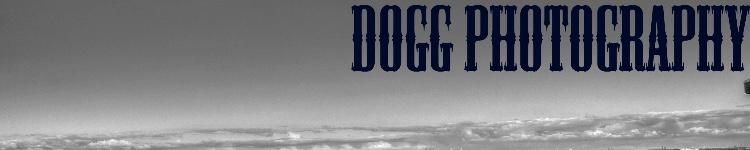 Portfolio van Doggphotography